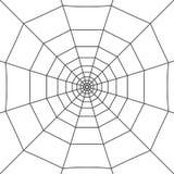 Spinnennetz auf Weiß Lizenzfreie Stockfotografie