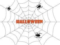 Spinnennetz Halloween-Hintergrund auf Weiß Stockfotos