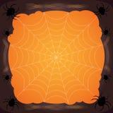 Spinnennetz Halloween-Hintergrund, Spinnennetzhintergrund Lizenzfreie Stockfotografie