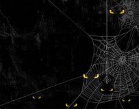 Spinnennetz und schlechter Gelbaugenhalloween-Hintergrund Lizenzfreie Stockfotos