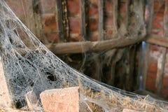 Spinnennetz in verlassenem Häuschen Lizenzfreie Stockfotos