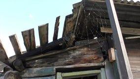Spinnennetze unter dem Dach des alten Holzhauses stock video footage