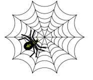 Spinnenvektor Lizenzfreie Stockfotos