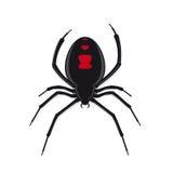 Spinnenvektor der schwarzen Witwe Lizenzfreies Stockbild