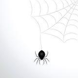 Spinnenweb und Spinne stock abbildung