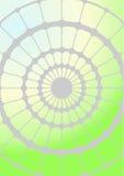 Spinneweb. stock illustratie