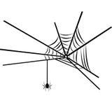 Spinneweb Vector Illustratie