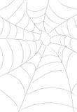 Spinneweb royalty-vrije illustratie