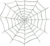 Spinneweb Stock Foto