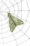 Spinneweb en dollar Royalty-vrije Stock Afbeelding