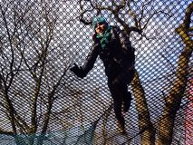 Spinneweb onder de bomen Royalty-vrije Stock Foto