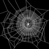 Spinneweb wit op zwarte achtergrond Vector Stock Foto's