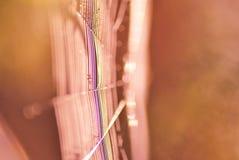 Spinnewebkant  Royalty-vrije Stock Afbeelding