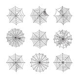 Spinnewebreeks op witte achtergrond wordt geïsoleerd die Stock Afbeelding