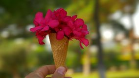 Spinning around with summer red bouquet in waffle cone stock footage