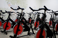 Spinning bikes. Classroom of stationary spinning bicycles royalty free stock photography