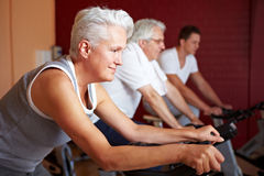 Spinning class in gym Royalty Free Stock Photos