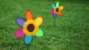 Spinning colorful pinwheel wind toys, Wind spinner - Closeup  stock video footage