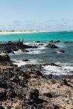 Spinning fisherman in Corralejo on Fuerteventura, Royalty Free Stock Image