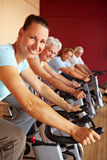 Spinning group in gym. People in a gym sitting on spinning bikes Stock Images