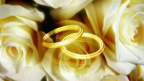 Spinning roses two rings stock video footage