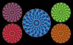 Spinning Rosettes. Rosettes that appear to be spinning due to an optical illusion - in a variety of colors Royalty Free Stock Photo