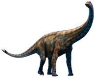 Spinophorosaurus vektor illustrationer