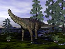 Spinophorosaurus dinosaur - 3D render. Spinophorosaurus dinosaurnext to wollemia pine trees - 3D render royalty free illustration