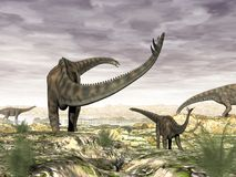 Spinophorosaurus dinosaurs herd - 3D render. Spinophorosaurus dinosaurs herd going to drink by sunset - 3D render vector illustration