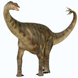 Spinophorosaurus over White. Spinophorosaurus is a sauropod dinosaur from Niger that lived in the Jurassic Period Royalty Free Stock Images