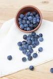 Spinosa do Prunus em um potenciômetro de argila e em uma toalha dispersada Fotografia de Stock