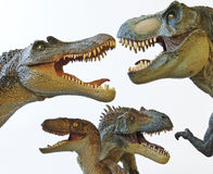 A Spinosaur, T. Rex, Velociraptor and Allosaur. A Spinosaurus, Tyrannosaurus Rex, Velociraptor and Allosaurus in a Dinosaur Group stock images