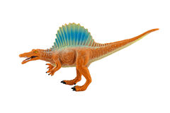 Spinosaurs dinosarus toy figure isolated on white background Royalty Free Stock Images