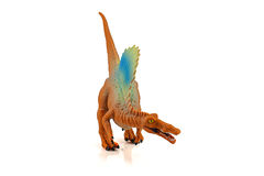 Spinosaurs dinosarus toy figure isolated on white background Stock Photos