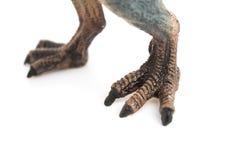 spinosaurus玩具的脚在白色的 库存照片