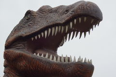 Spinosaurus Obrazy Royalty Free