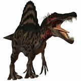 Spinosaurus Royalty Free Stock Photography