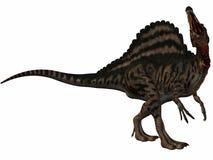 Spinosaurus Fotografía de archivo