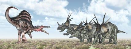Spinosaurus attacks Styracosaurus Stock Photos