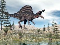 Spinosaurus dinosaur - 3D render. One spinosaurus dinosaur walking in the desert among cycaeodia and calamite plants - 3D render stock illustration