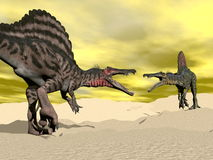 Spinosaurus dinosaur fighting - 3D render Royalty Free Stock Photography