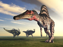 Spinosaurus and Gigantspinosaurus Royalty Free Stock Images