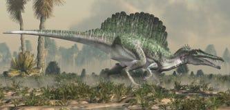 Spinosaurus i en våt lågland royaltyfria bilder