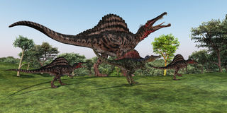Spinosaurus Mother. A Spinosaurus mother walks with her youngsters in prehistoric times Stock Photo