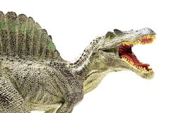 Spinosaurus plastic figurine. On white background stock photo
