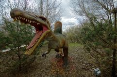 Spinosaurus, prehistoric reptile in natural habitat. Spinosaurus is a prehistoric reptile with bone `sail` on the back and skull, which is the same as the stock photos