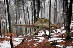 Spinosaurus in the forest. Spinosaurus at Rasnov Dino Parc, Brasov County, Romania Stock Photos