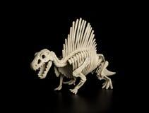 Spinosaurus-Skelett stockfotos