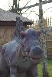 Spinosaurus - Spinosaurus aegyptiacus Royalty Free Stock Photography