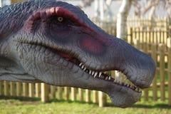 Spinosaurus - Spinosaurus aegyptiacus Stock Image